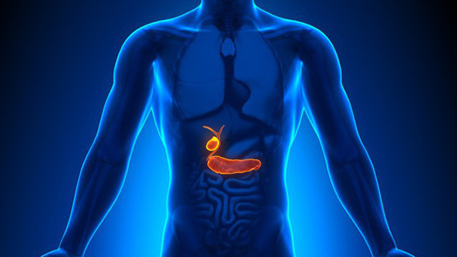 Đây là 7 cơ quan nội tạng trên người có thể cắt bỏ mà vẫn sống sót