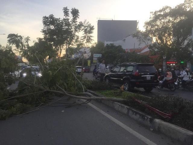 Ô tô BMW gây tai nạn liên hoàn trên đường phố Sài Gòn, những người trên xe rời khỏi hiện trường - Ảnh 1.