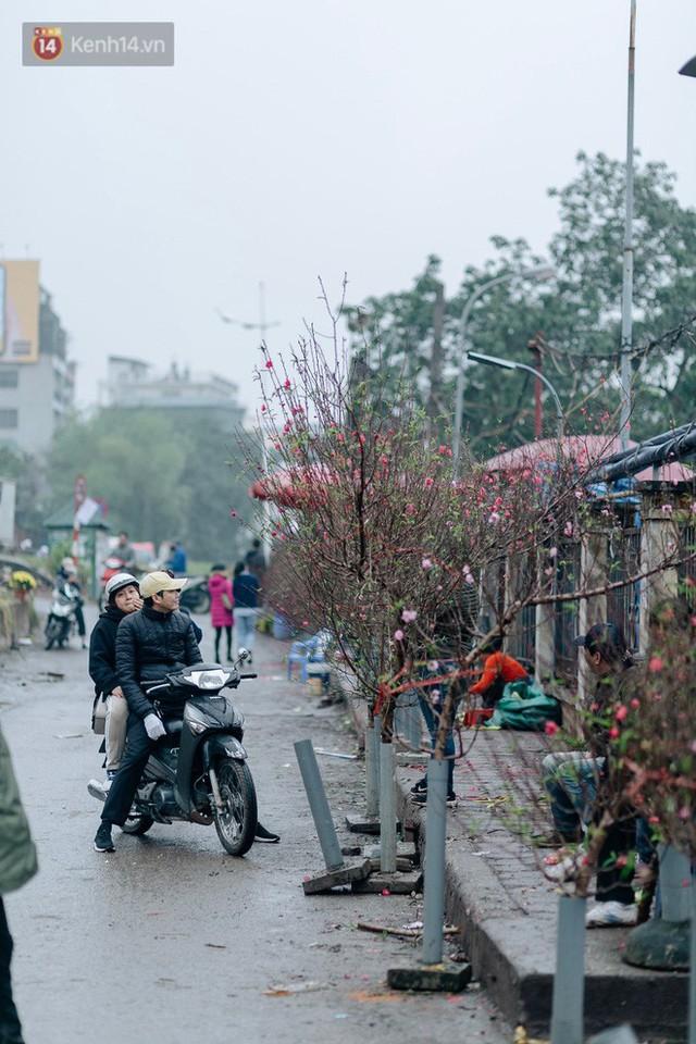 Chùm ảnh: Hoa đào đã nở đỏ rực trên những tuyến phố Hà Nội, Tết đã đến rất gần rồi! - Ảnh 11.
