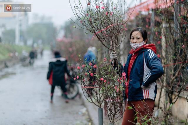 Chùm ảnh: Hoa đào đã nở đỏ rực trên những tuyến phố Hà Nội, Tết đã đến rất gần rồi! - Ảnh 12.
