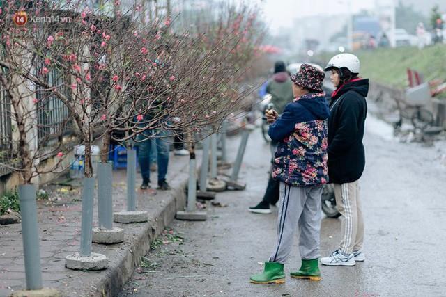 Chùm ảnh: Hoa đào đã nở đỏ rực trên những tuyến phố Hà Nội, Tết đã đến rất gần rồi! - Ảnh 16.