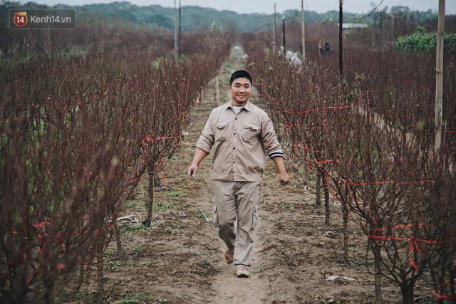 Chùm ảnh: Hoa đào đã nở đỏ rực trên những tuyến phố Hà Nội, Tết đã đến rất gần rồi! - Ảnh 6.