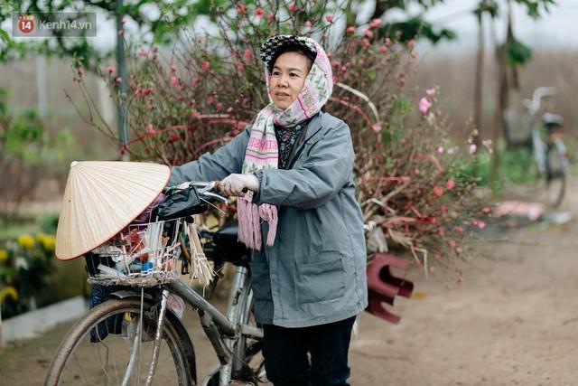 Chùm ảnh: Hoa đào đã nở đỏ rực trên những tuyến phố Hà Nội, Tết đã đến rất gần rồi! - Ảnh 7.