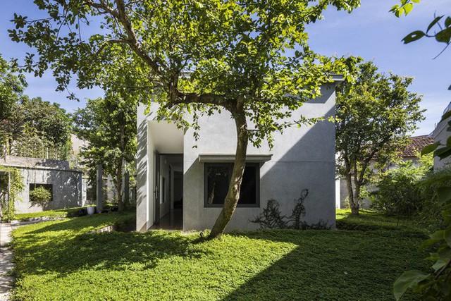 Căn nhà có lối thiết kế độc đáo bậc nhất Việt Nam - Ảnh 4.
