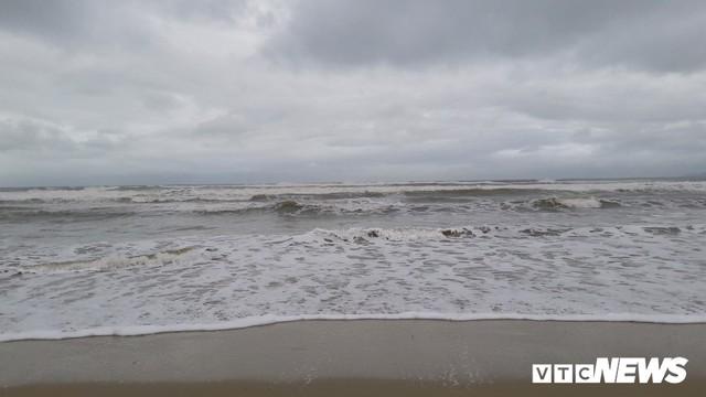 Ảnh: Mang sắt thép quây chằng chịt cả trăm cây dừa ven bãi biển hấp dẫn nhất hành tinh - Ảnh 1.