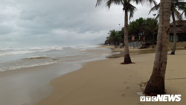 Ảnh: Mang sắt thép quây chằng chịt cả trăm cây dừa ven bãi biển hấp dẫn nhất hành tinh - Ảnh 6.