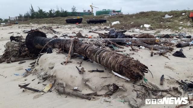 Ảnh: Mang sắt thép quây chằng chịt cả trăm cây dừa ven bãi biển hấp dẫn nhất hành tinh - Ảnh 8.