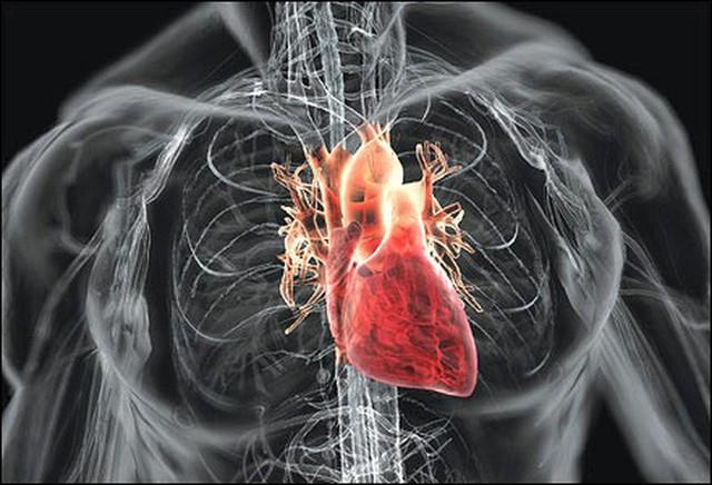 Thạc sĩ 25 tuổi bị nhồi máu cơ tim tử vong: BS khuyên điều cần làm khi có người đau tim - Ảnh 2.