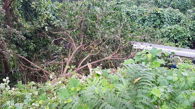 Xe khách rơi trên đèo Hải Vân, 21 sinh viên bị nạn - Ảnh 3.