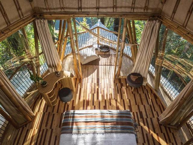 Ngỡ ngàng biệt thự tre 6 tầng tuyệt đẹp giữa rừng - Ảnh 3.