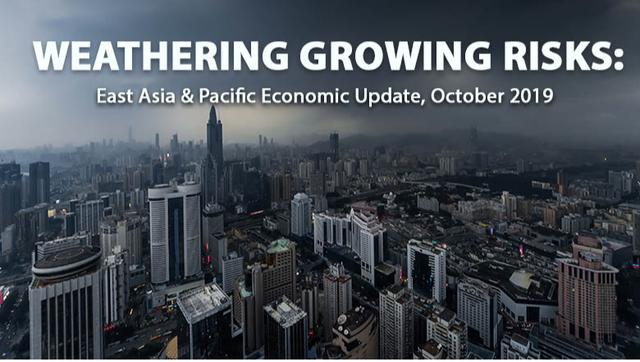 Kinh tế trưởng World Bank Việt Nam: Cơn bão đang phủ lên nền kinh tế toàn cầu, nhưng Việt Nam thì đang có mặt trời chiếu sáng! - Ảnh 1.
