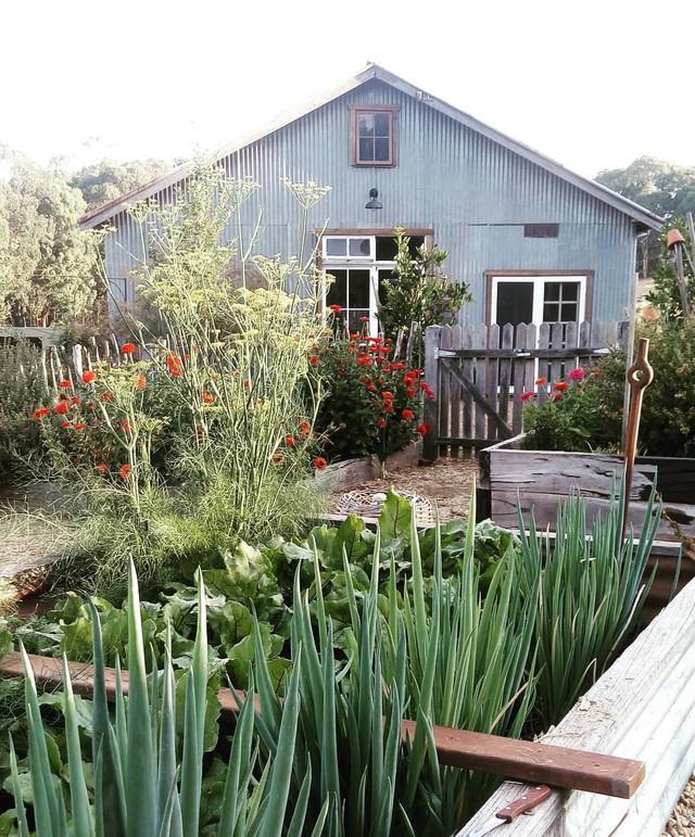 Gia đình 5 người quyết tâm không trở lại thành phố vì quá yêu thích cuộc sống nhà vườn ở nông thôn - Ảnh 19.