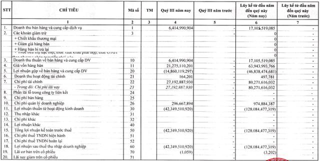 BOT Cầu Thái Hà (BOT) lỗ tiếp 42 tỷ đồng quý 3, nâng tổng lỗ từ đầu năm lên 128 tỷ đồng - Ảnh 1.