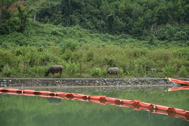 Tiếp tục hút bùn kênh dẫn nước sông Đà sau gần 20 ngày vụ đổ trộm dầu thải - Ảnh 10.