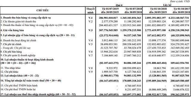 Thuỷ sản Hùng Vương (HVG): Công ty mẹ báo lỗ 189 tỷ đồng niên độ 2018-2019 - Ảnh 1.