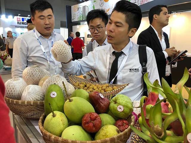 Trung Quốc siết hàng nhập khẩu, nông sản Việt lao dốc - Ảnh 1.