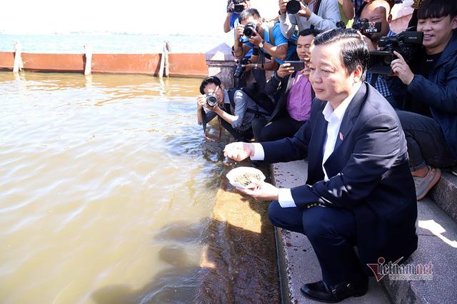 Bộ trưởng Trần Hồng Hà ra hồ Tây cho cá ăn - Ảnh 6.