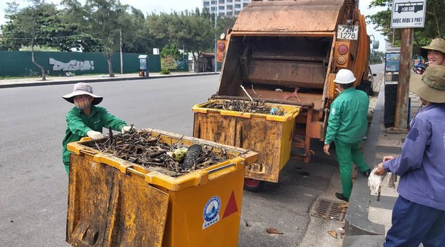 Cận cảnh bãi biển Vũng Tàu bị cả trăm tấn rác vây kín!  - Ảnh 5.
