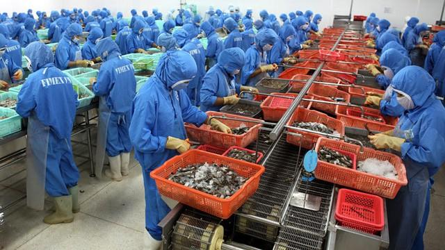 Trung Quốc đóng lối nhỏ, tôm cá rớt giá, dân Việt khóc ròng - Ảnh 2.