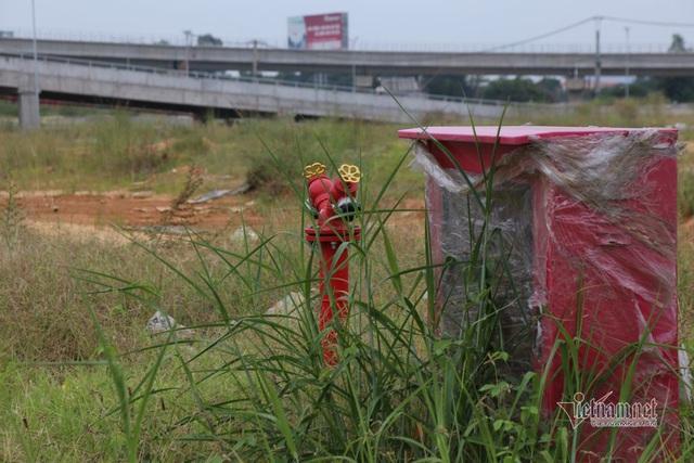 Cỏ dại um tùm bên trong bến xe hiện đại nhất Đông Nam Á của Sài Gòn - Ảnh 10.  Cỏ dại um tùm bên trong bến xe hiện đại nhất Đông Nam Á của Sài Gòn photo 8 15737218420691164874214