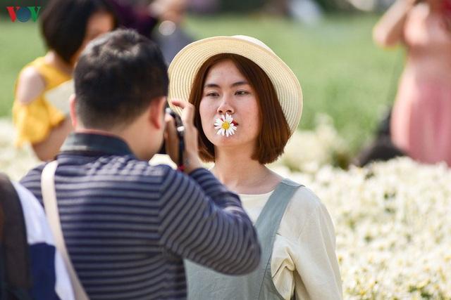 Cúc hoạ mi hút khách đến vườn hoa Nhật Tân  - Ảnh 4.
