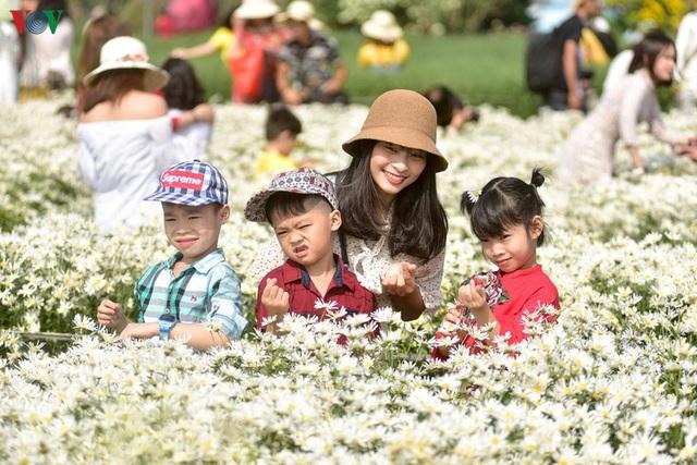 Cúc hoạ mi hút khách đến vườn hoa Nhật Tân  - Ảnh 8.