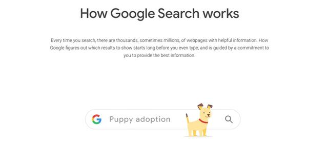 Google thao túng kết quả tìm kiếm, ẩn các chủ đề gây tranh cãi, ưu tiên các công ty lớn - Ảnh 1.