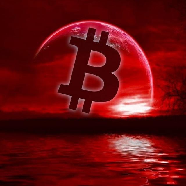 Thị trường 'rực cháy', Bitcoin biến động 'điên cuồng' - Ảnh 1.