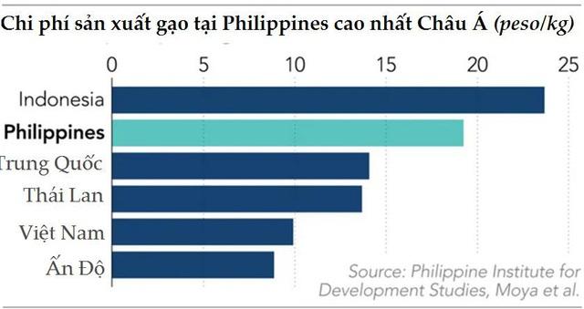 Sau nhiều tranh cãi, Philippines vẫn sẽ tiếp tục là động lực của ngành xuất khẩu gạo Châu Á  - Ảnh 2.