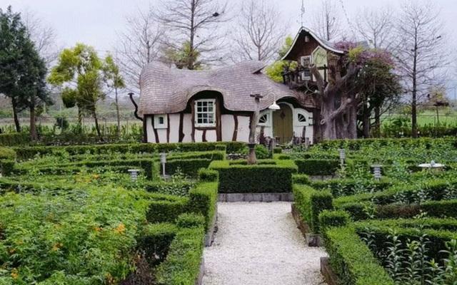 Người phụ nữ 60 tuổi dùng khoản tiền tiết kiệm trong 12 năm để mua đất, xây ngôi nhà cổ tích an hưởng tuổi già cùng người thân - Ảnh 4.