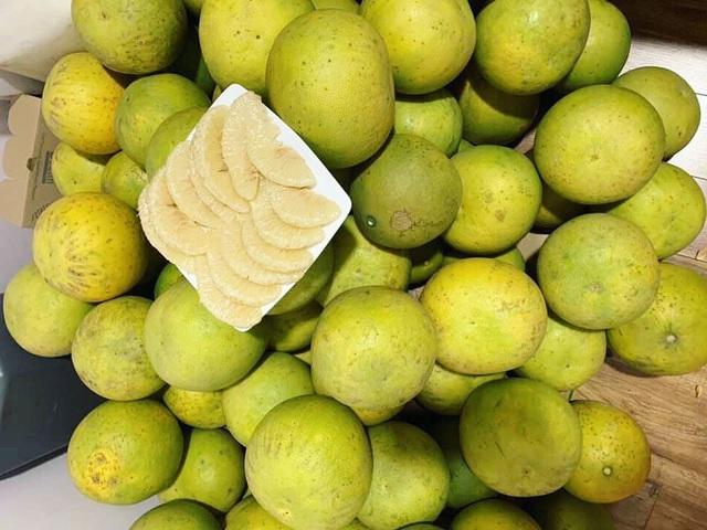 Đại gia Hà Thành chơi trội, bao trọn vườn bưởi cổ 2.000 quả ăn Tết - Ảnh 2.