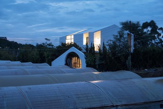 Ngôi nhà hình khối khác lạ đẹp mê mẩn giữa rừng thông - Ảnh 1.