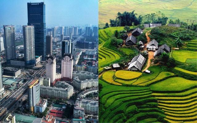 27 tuổi, làm việc ở Hà Nội mức lương 15-16 triệu, tôi có nên về quê với lương 7-8 triệu hay không? - Ảnh 1.