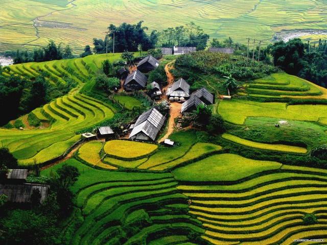 27 tuổi, làm việc ở Hà Nội mức lương 15-16 triệu, tôi có nên về quê với lương 7-8 triệu hay không? - Ảnh 5.