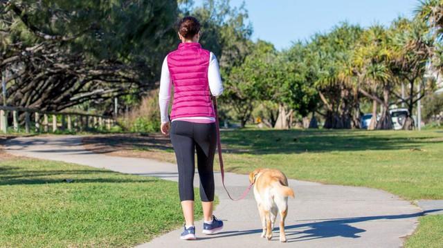 """Kiên trì đi bộ 15 phút mỗi ngày: Mọi bệnh tật đều bị """"xóa sổ"""", hiệu quả còn hơn thần dược - Ảnh 1."""