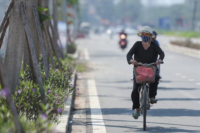 Cận cảnh hàng cây hoa sữa đang độ nở trên con đường mới mở của Thủ đô - Ảnh 5.