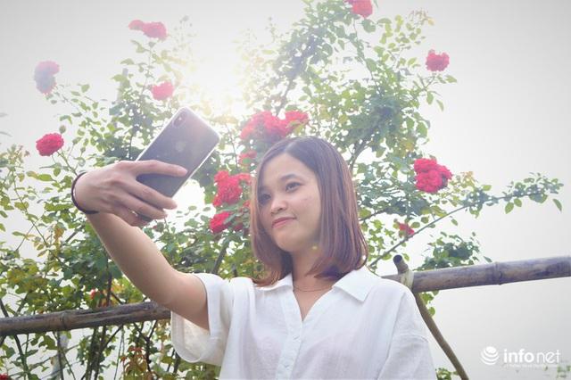 Chàng thanh niên 30 tuổi trồng trại hoa hồng thu hàng trăm triệu mỗi năm - Ảnh 8.