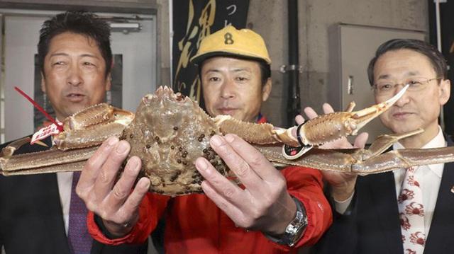 Ai được ăn con cua tuyết đắt kỷ lục 46.000 USD? - Ảnh 1.