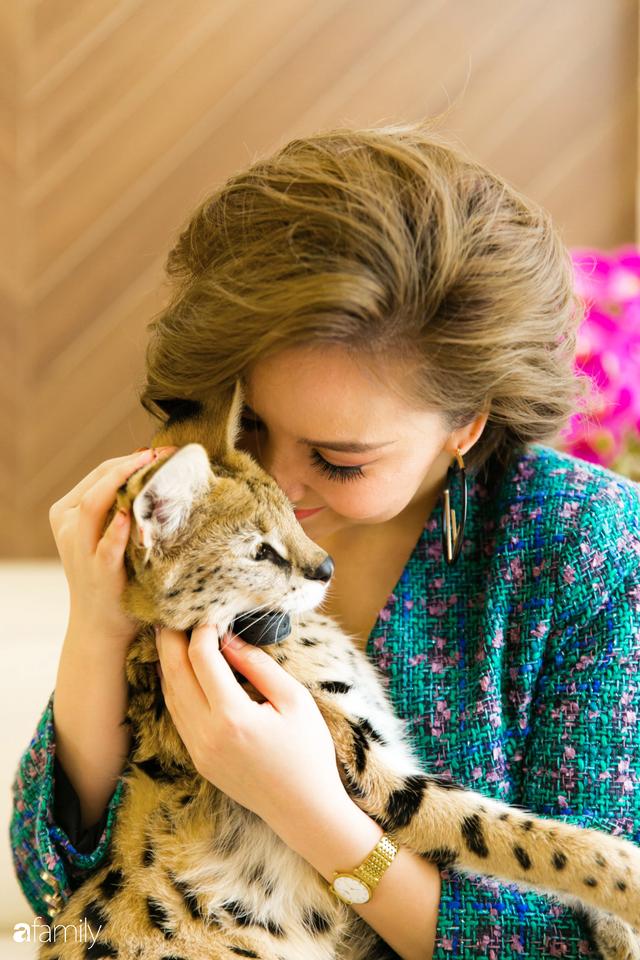 Trang Hà - Cô gái mang những chú mèo trị giá hàng tỷ đồng về Việt Nam và tiết lộ trào lưu nuôi thú cưng mới của giới đại gia và siêu giàu tại Sài Gòn - Ảnh 16.