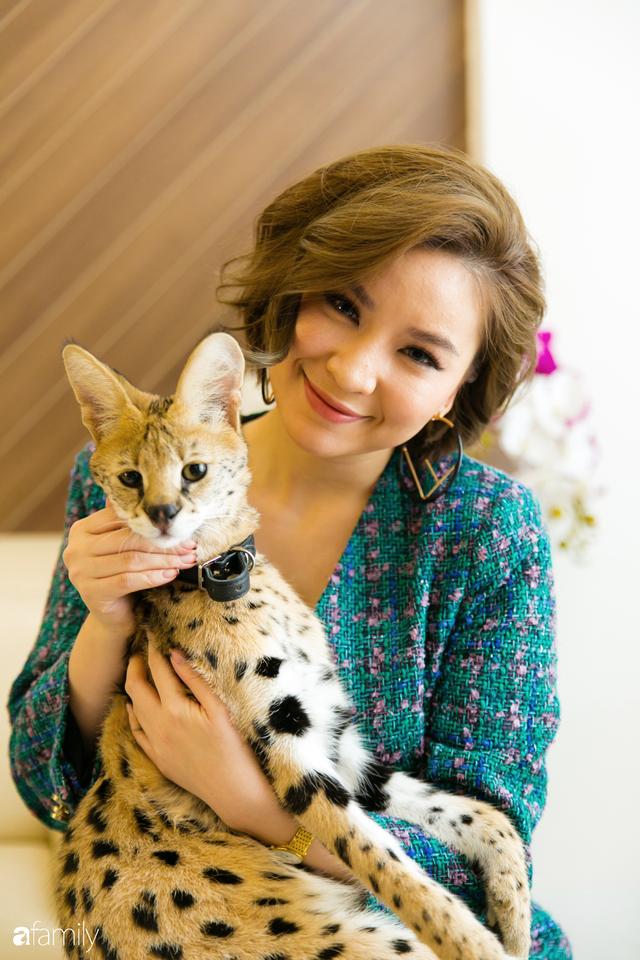 Trang Hà - Cô gái mang những chú mèo trị giá hàng tỷ đồng về Việt Nam và tiết lộ trào lưu nuôi thú cưng mới của giới đại gia và siêu giàu tại Sài Gòn - Ảnh 17.