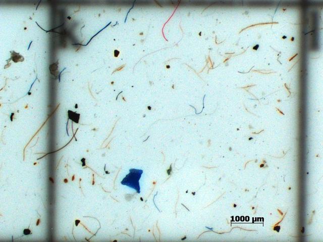 Ngả mũ trước công nghệ của người Nhật: Lọc rác vi nhựa ngay từ ống cống từng nhà - Ảnh 3.
