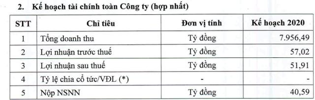 Đạm Cà Mau (DCM) bất ngờ giảm kế hoạch lợi nhuận năm 2020 xuống còn 52 tỷ đồng - Ảnh 2.