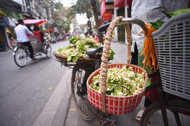 Đất Hà Thành thơm lừng mùa hoa bưởi - Ảnh 10.