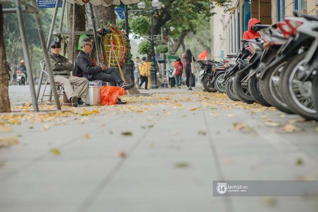 Hà Nội những ngày mùa xuân lá đỏ lá vàng: Đẹp mãi thế này thì khỏi cần đi Hàn hay Nhật luôn nhỉ? - Ảnh 19.