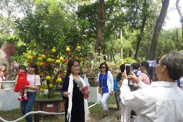 Đi chơi tết, dân Sài Gòn thích thú ngắm kỳ hoa dị thảo - Ảnh 1.
