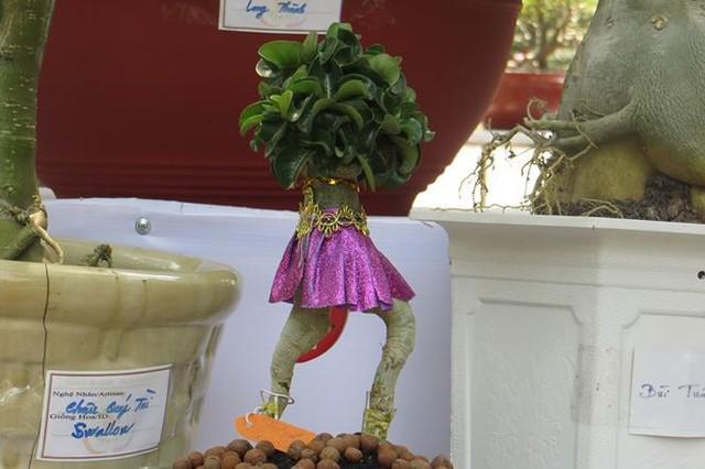 Đi chơi tết, dân Sài Gòn thích thú ngắm kỳ hoa dị thảo - Ảnh 7.