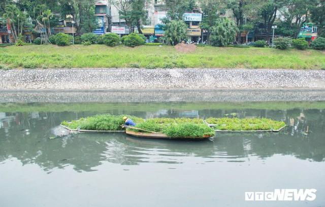 Sau 4 năm thả bè thủy trúc, nước sông Tô Lịch giờ ra sao? - Ảnh 2.