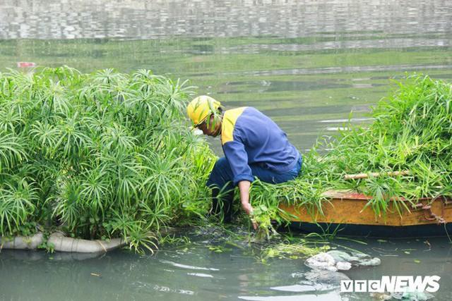 Sau 4 năm thả bè thủy trúc, nước sông Tô Lịch giờ ra sao? - Ảnh 7.