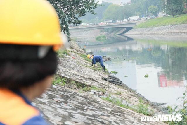 Sau 4 năm thả bè thủy trúc, nước sông Tô Lịch giờ ra sao? - Ảnh 9.