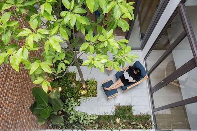 Nhà phố vẫn ngập tràn cây xanh bởi thiết kế độc - Ảnh 5.